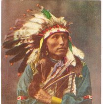 "Image of Battle of Wounded Knee (1890) ""James Long Elk"""