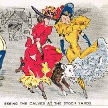 "Image of Seeing the Calves at the Stock Yard ""Fun"" Postcard"