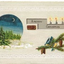 Image of Merry Christmas 1909 Postcard