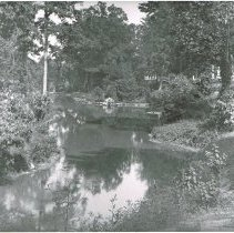 Image of Oak Groove Cemetery View of the lake