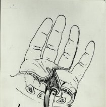 Image of Drawing by Dr. Littler