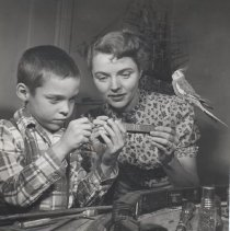 Image of Actress Jane Wyman and Son with Layout - Actress Jane Wyman and son, Michael, play with parrot by toy train layout.  Jane wants to use her drill but pet cockatoo, Jeeves, is using it as a perch.  One of a series of 6 photos.