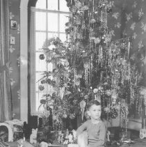 Image of Sam Walker with Lionel Trains under Christmas tree - Sam Walker, TCA #91-33104, with Lionel train layout under Christmas tree.   Trains are a #226 locomotive with a vanderbuilt tender and 2600 series freight cars.  The unloading bins suggest that there are some operating cars out of view.  The train on the left is a Blue Comet.