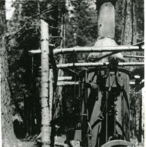 Image of P28922 - An employee posing by a steam donkey in Tuolumne County. West Side Lumber Company.