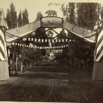 Image of TP1165 - N.S.G.W. Native Sons of the Golden West Parade route. September 09, 1891, Sonora. Showing the arch with the bear above a picture at the top in the middle of the arch. Letters N S G W on the cross arms with frayed rope hanging from pillar to pillar across the street. The pillars have flags on top of them. looking down the street there are flags and banners that span the street in deferent areas, coming from the buildings and the trees that line the parade route.