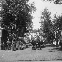 Image of TP281 - Photo, black and white, Sept 9, 1895.