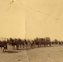 Image of TP3125 - Road Between Jamestown and Sonora. Early day freight train. Per tag on back of photo, Loaned by Murray Marks