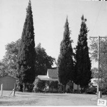Image of TP373 - Small home at Wyckoff and Snell at Sonora.  Three tall cypress trees are at the edge of the yard.  A garage is at the left  and a 1930's style car is parked in front of the house.