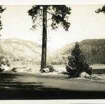 Image of TP7003 - A black and white photo postcard of Strawberry Lake at Pinecrest.