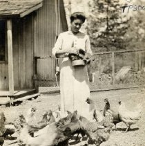 Image of TP3000 - Annie Hoskins feeding chickens at the Golden Gate Mine.