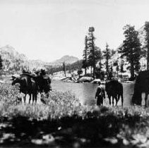 Image of TP7118 - A black and white photo of two (2) unidentified men with their horses at Emigrant Lake located 17.7 miles NE of Sonora Junction, Sonora, Ca. Tuolumne County