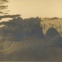 Image of P8569 - Print, Photographic