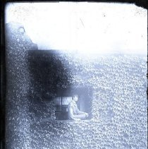 Image of P9540 - Negative, Glass Plate