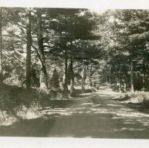 Image of P07_11_03 - Harriman Photograph Collection