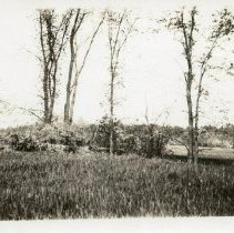 Image of P07_69_01 - Harriman Photograph Collection
