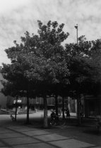 Image of GN10223 - Eugene - Avenues - 9th (Broadway)