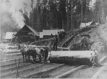 Image of GN2609 - Lumber - Transportation - Animal