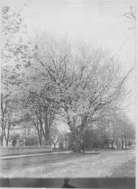 Image of GN8478 - Eugene - Streets - A to C
