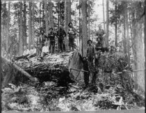 Image of HR18 - Lumber - Personnel