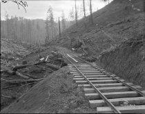 Image of KE1406 - Lumber - Transportation - Rail
