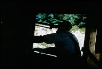 Image of DH3120 - McCloud River Railroad (MCR) Trip