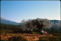 Image of DH3187 - McCloud River Railroad (MCR) Trip