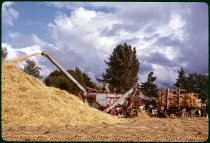 Image of DH370 - Silverton Tractor Harvest Festival