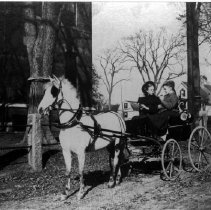Image of PHOTOGRAPH, MARY BRIDGE AND HELEN V. PAINE, IN PONY CART BY ABBOT HALL