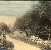 Image of PHOTOGRAPH, GINGERBREAD HILL LANE - HAND-TINTED GRAY-TONED MATTE COLLODIAN PRINT MOUNTED FLUSH ON �VERY HEAVY CARDBOARD; IMAGE OF GINGERBREAD HILL LANE.