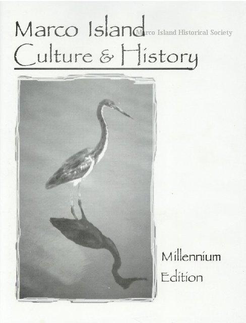 Millenium Marco Island
