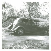 Image of R1993.24.330 - Hildred Raymond Photo Collection