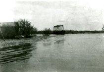Image of 1989-9.0902 - Print, Photographic