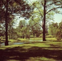 Image of Alexandra Park