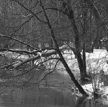 Image of Winter Scenery