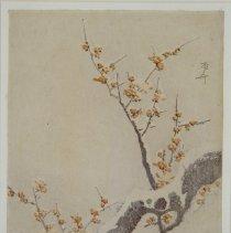 Image of Japanese Prints - Snow laden kobai tree in full bloom