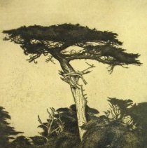 Image of American Art - The Dryad's Parasol