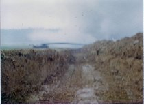 Image of Anti-tank Ditch - 2001.002.003.010