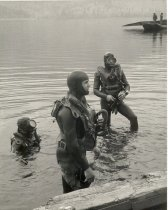 Image of Diving - 2003.003.014