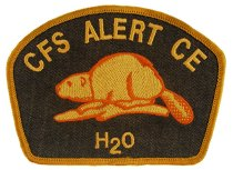 Image of Badge, Military - 2004.059.004