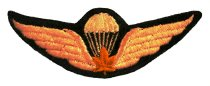 Image of Jump Wings - 2005.036.039