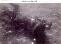 Image of Diving  - 2004.020.011.001
