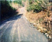 Image of Slesse Creek  - 2003.009.004.002
