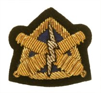Image of Badge, Military - 2004.019.253