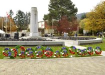 Image of Remembrance Day - 2012.061.006