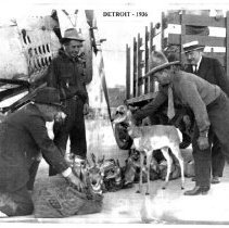 Image of Bill Monday & Charles Belden with pronghorn