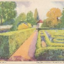 Image of Postcard - The Box Hedges-Planted by General Washington