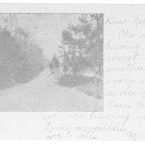 Image of Postcard of Lover's Lane