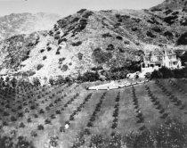 Image of Rindge home and farmland in Malibu Canyon - FF-139