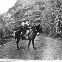 Image of Rindge boys on a donkey
