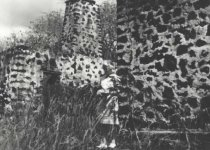 Image of 1976.025.219 - Print, Photographic